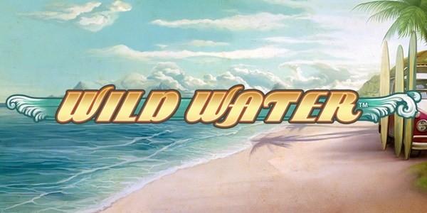 Главные детали геймплея игры Wild Water из клуба Вулкан