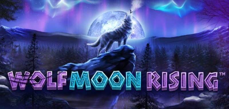 Основные черты автомата Wolf Moon из казино Вулкан