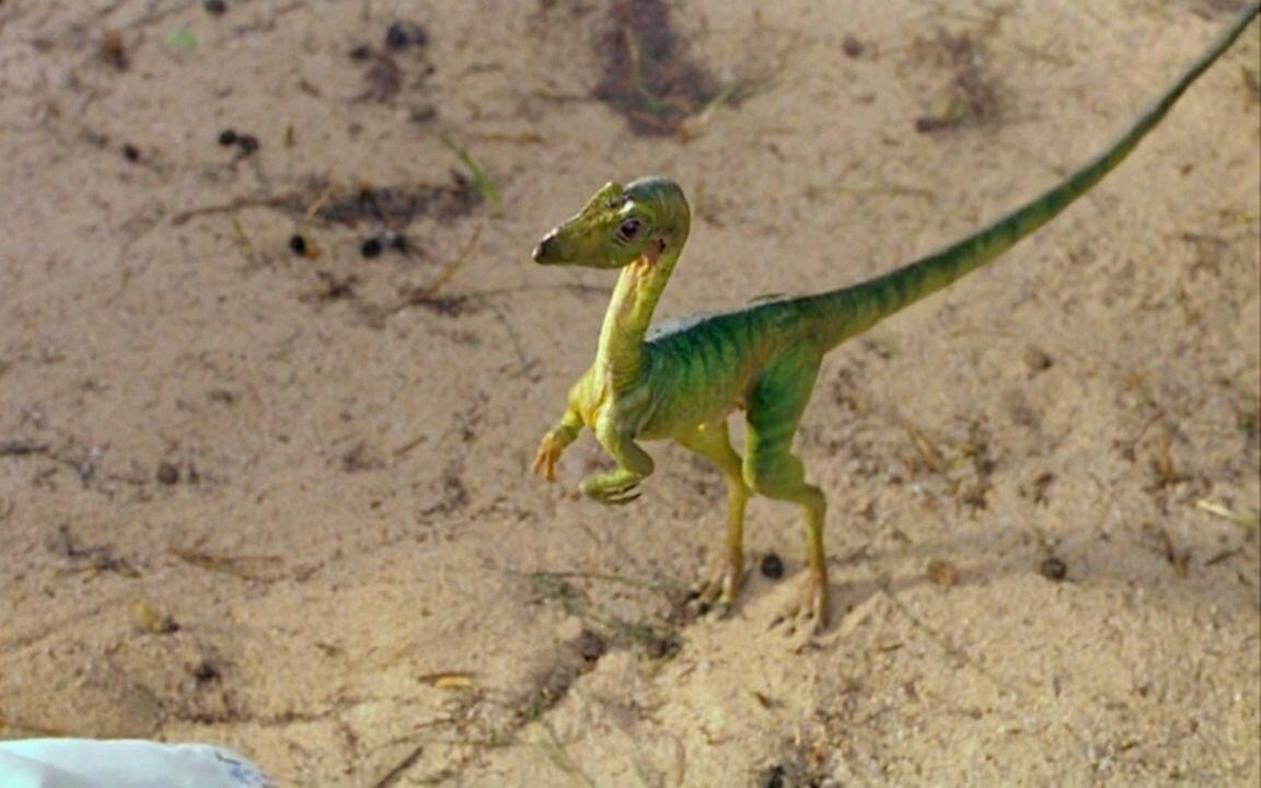kakim byl samyj malenkij dinozavr v mire